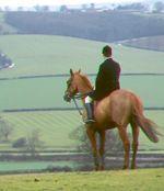 Viscount Crouchback