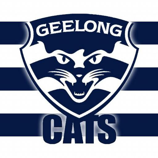 The Decade That Was Geelong Cats