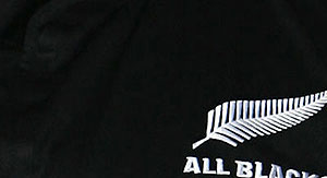 All Blacks out of Rugby World Cup