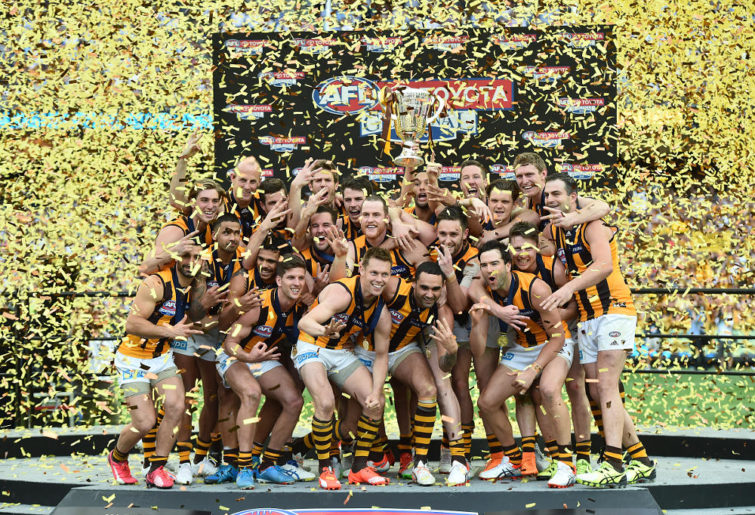 Hawthorn Hawks 2015 AFL Grand Final Premiership Flag