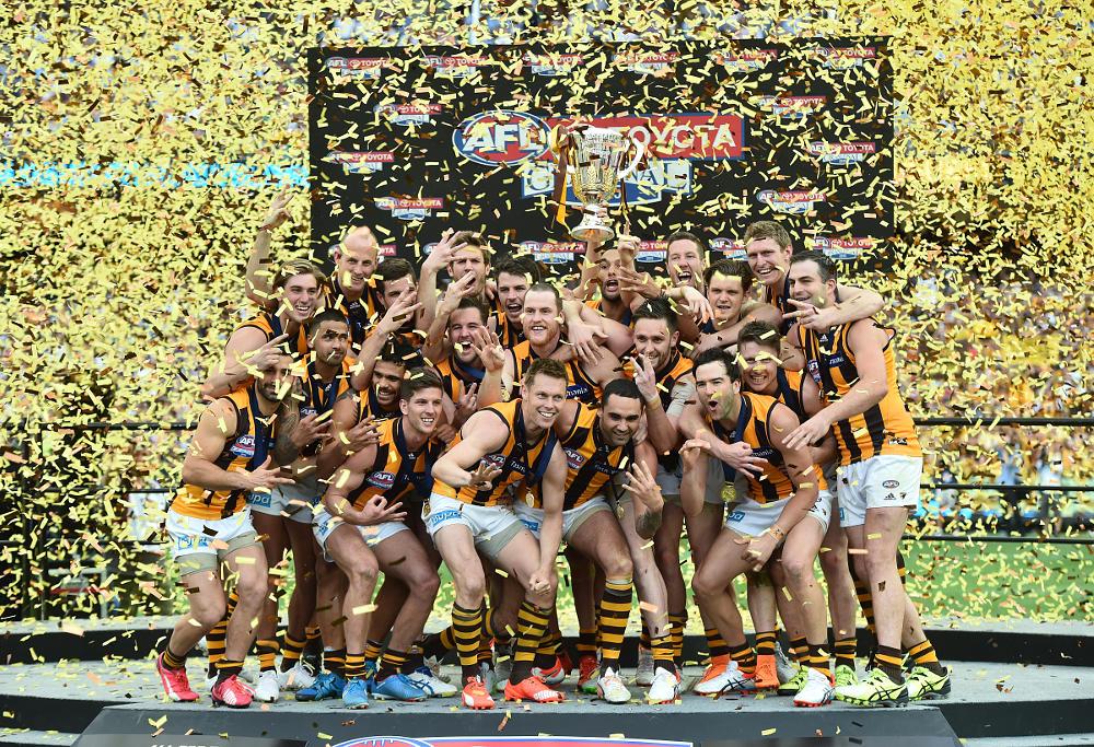 Hawthorn Hawks 2015 AFL Grand Final Premiership Flag