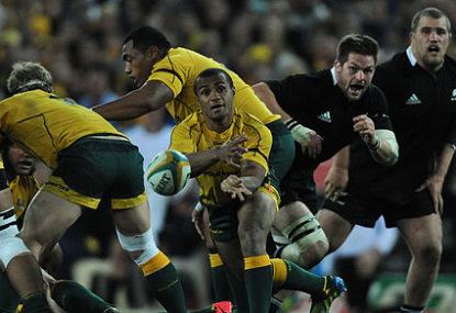 Why are so many Wallabies injured?