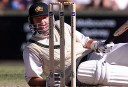 Golden Ashes: Australia's greatest unique partnerships