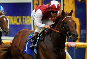 2014 Blue Diamond Stakes day: Group 1 preview and tips