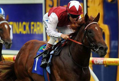 Animal worship: horse reverence in Australia