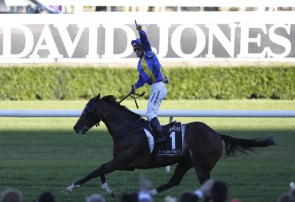 Ranvet to determine the best: Fiorente or It's A Dundeel