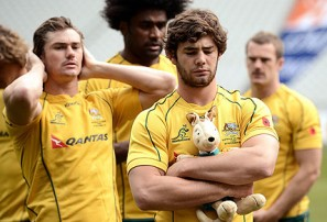 Is Liam Gill the answer to Wallabies' woes?