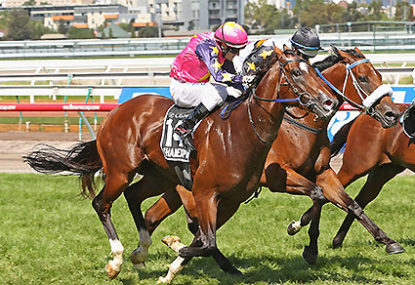 Black Caviar Lightning Stakes preview, live blog and tips