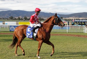 The Roar's top 50 Australian racehorses of all-time (Part 7) 35-31