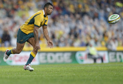 Observations of the Newlands Wallabies