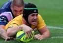 Why the Wallabies must select overseas players