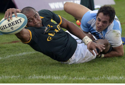 Wallabies vs Springboks: Rugby Championship preview