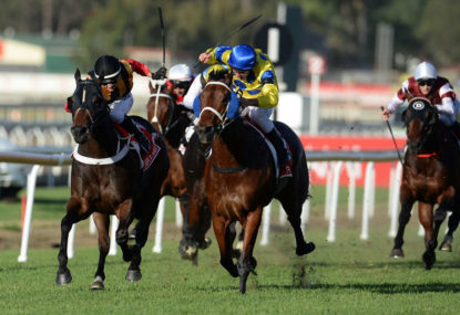 Melbourne Cup 2014: Individual horse analysis, tips and preview