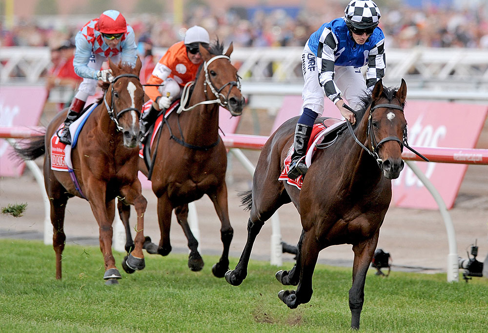 List of Melbourne Cup winners - Wikipedia