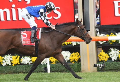 Melbourne Cup 2014: Protectionist - how the race was won
