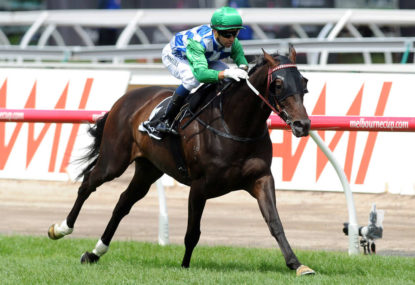 Melbourne Cup: Runner-by-runner guide and tips