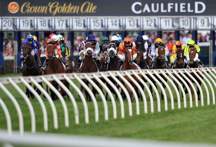 Horses racing at Caulfield racecourse