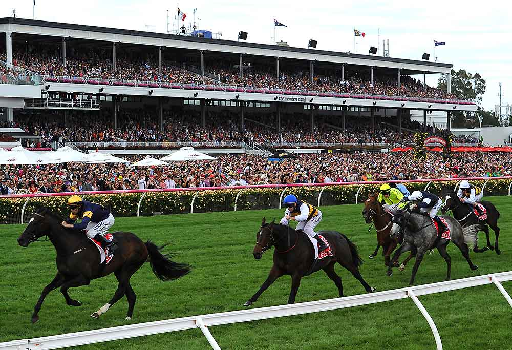 Horses in the straight at Flemington racecourse