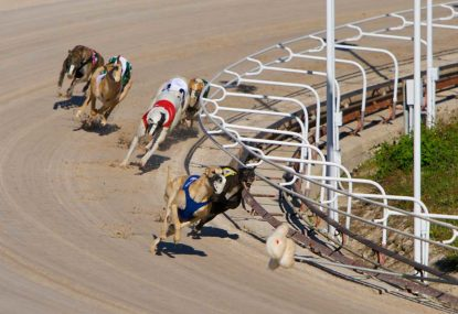 The public has got it wrong about racing