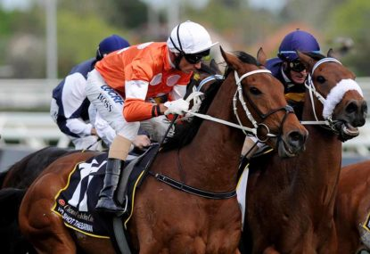 The Roar's 2016 Melbourne Cup expert tips and predictions: Final word
