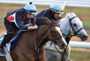 Behind the barriers: Five bets for Monday, 20 August