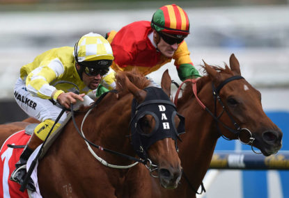 Dr George's 2015 Melbourne Cup field analysis and tips