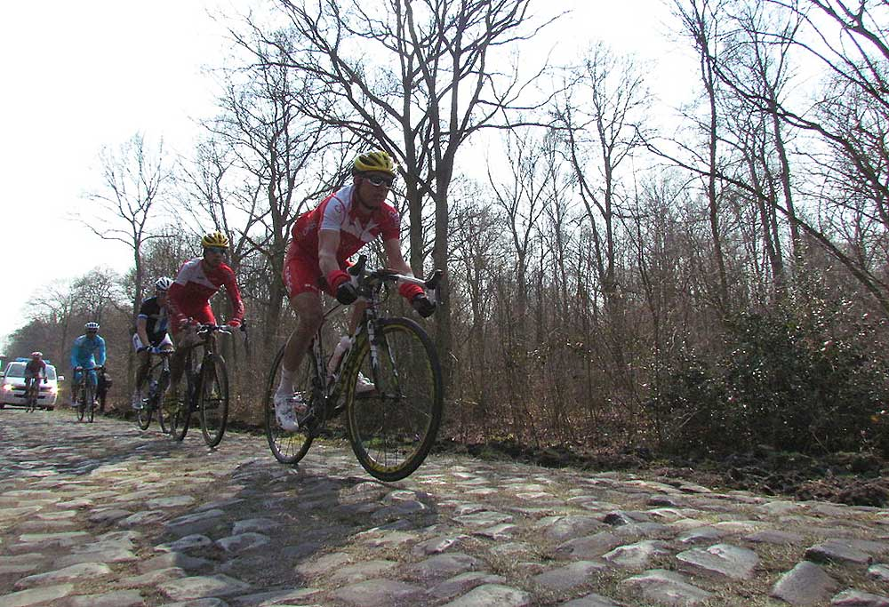 Forest of Arenberg in cycling's Paris Roubaix