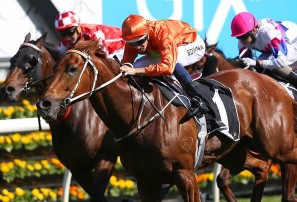 Past the post: Randwick April 7 review