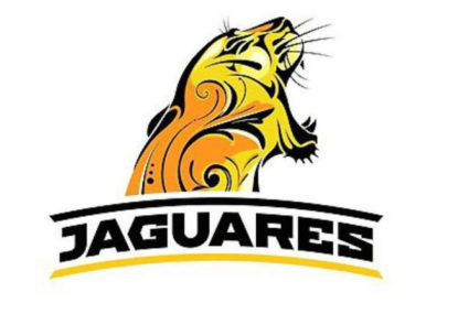 The Jaguares will hope for more in 2017