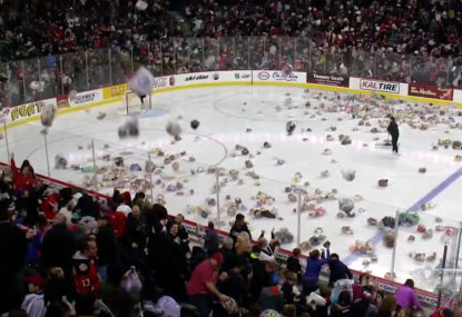 WATCH: 30,000 teddy bears tossed onto ice for an epic celebration