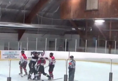 WATCH: Referee punches player, coach punches referee in unhinged hockey brawl