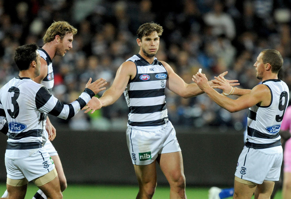 Tom Hawkins Geelong Cats AFL 2015