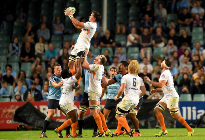 Henco Venter Cheetahs Super Rugby Rugby Union 2016