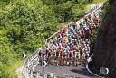 The peloton cycle through the Italian countryside <br /> <a href='https://www.theroar.com.au/2016/05/26/giro-ditalia-2016-stage-18-live-race-updates-blog/'>Giro d'Italia 2016: Stage 18 live race updates, blog</a>
