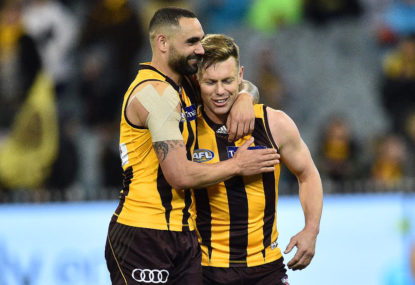 Hawthorn Hawks vs North Melbourne Kangaroos highlights: Hawks by 39