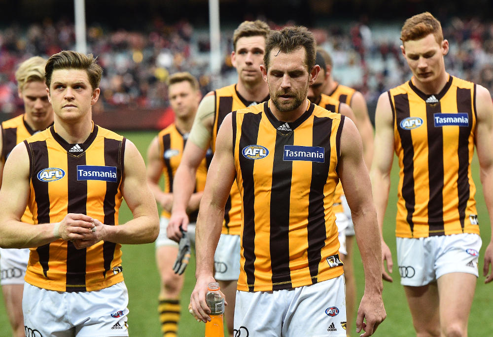 Luke Hodge Hawthorn Hawks AFL 2016