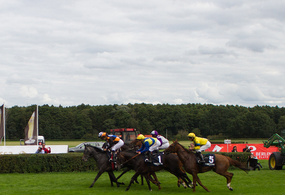 Horses fly the gates