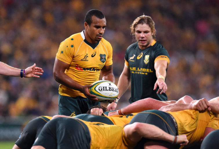 Will Genia Wallabies Springboks Rugby Union Test Championship 2016 Australia South Africa