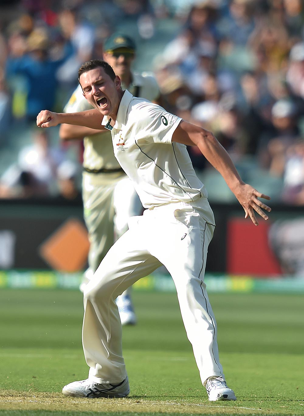 Australian bowler Josh Hazlewood reacts after dismissing South African batsman Quentin de Kock on day 1 of the third Test match between Australia and South Africa at the Adelaide Oval in Adelaide, Thursday, Nov. 24, 2016. Australia play South Africa in the third and final Test match tomorrow. (AAP Image/Dave Hunt)