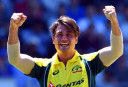 Stoinis saves the nation
