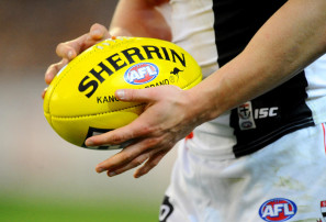 st-kilda-saints-afl-generic