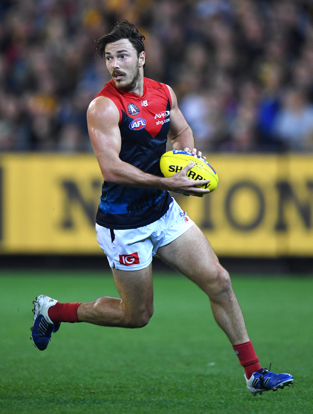 Michael Hibberd Melbourne Demons AFL 2017 tall