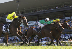 Past the post: Rosehill blackbookers, 31 March