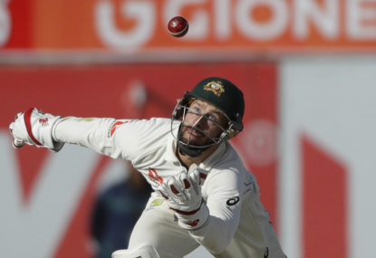 Matthew Wade returns to Tasmania but will he wear the gloves?