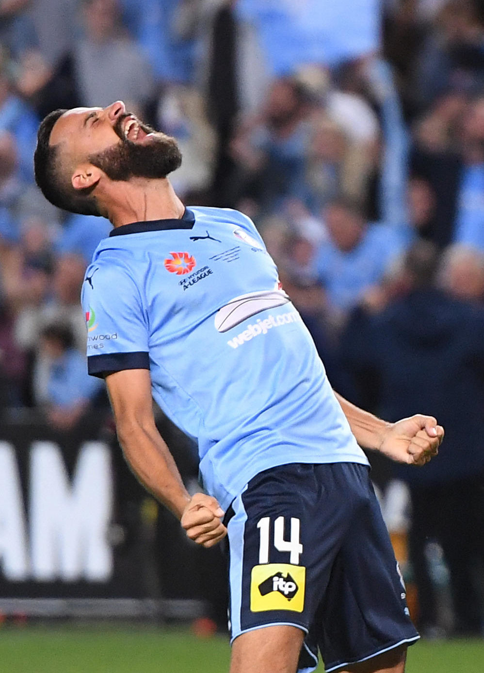 Alex Brosque Sydney FC A-League Grand Final 2017 tall