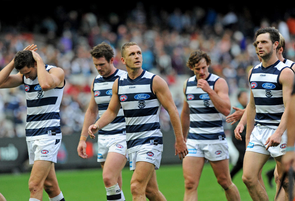 Joel Selwood Geelong Cats AFL 2017