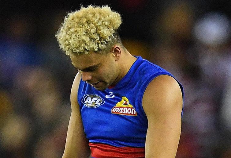 Jason Johannisen Western Bulldogs AFL 2017