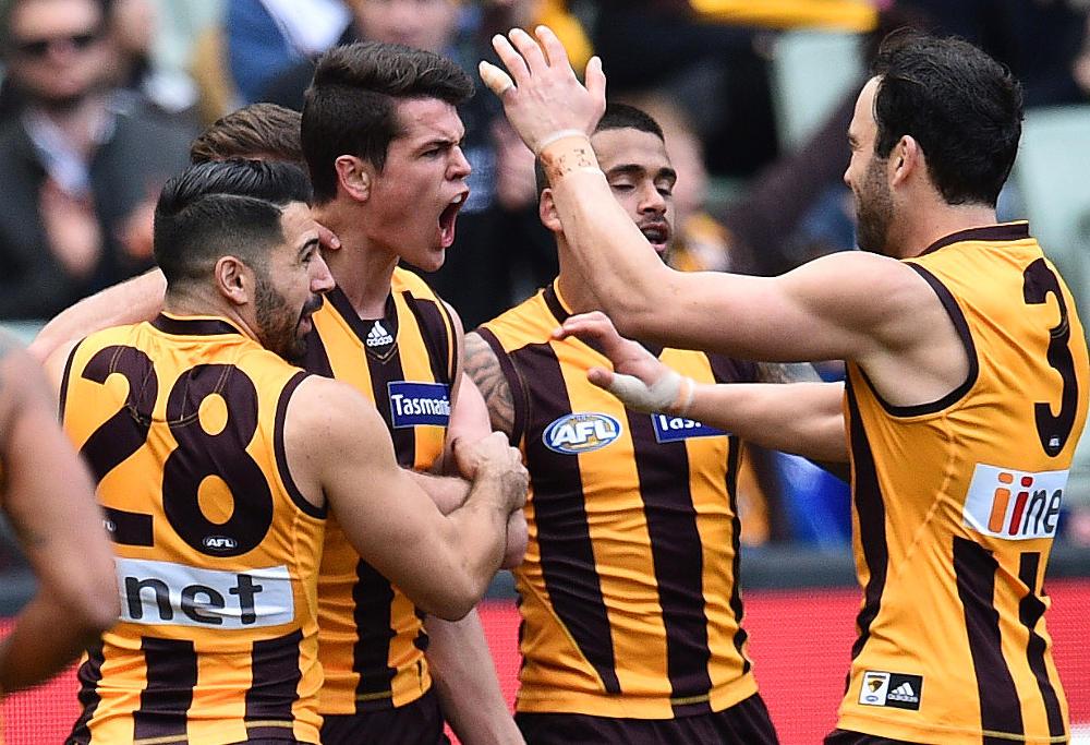Ryan Burton Hawthorn Hawks AFL 2016