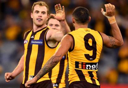Hawks' Tom Mitchell voted AFL players' MVP