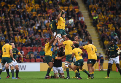 Wallabies vs. Springboks: A rivalry hiding in plain sight